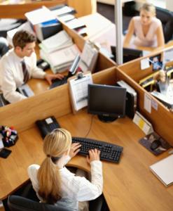 employee_productivity