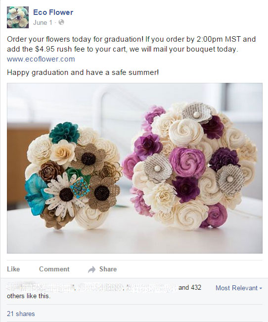 Eco Flower Facebook ad sales