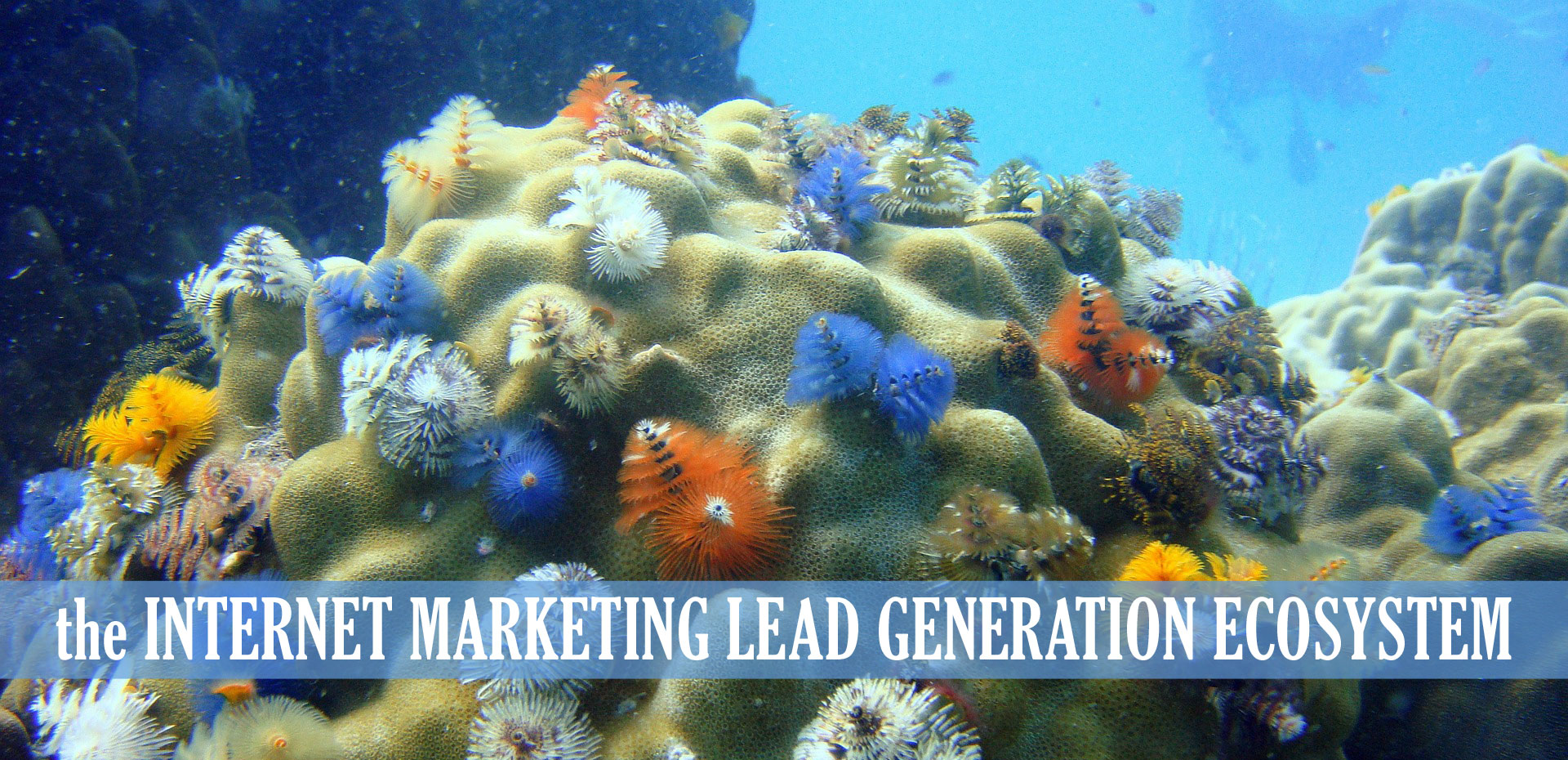 internet lead generation ecosystem