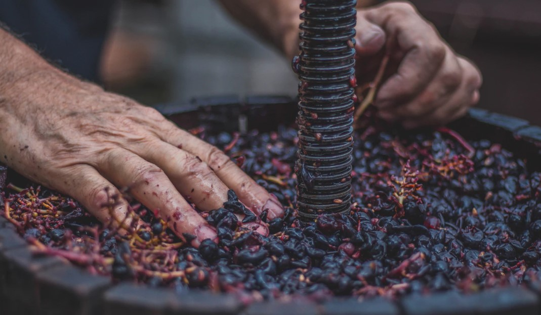 hobby entrepreneur wine making