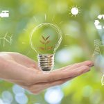 5 Tips For A Greener Business